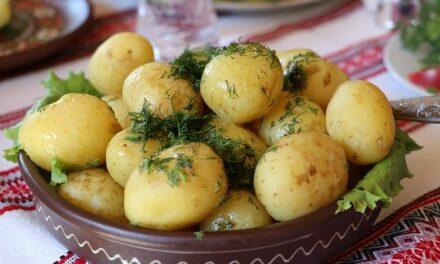 La pomme de terre pour maigrir