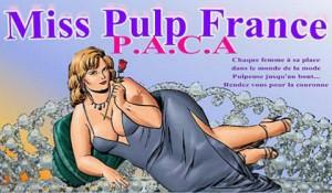 miss france 2014 n'a qu'à bien se tenir