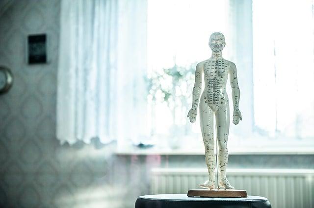 points d'acupuncture pour maigrir