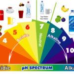 Santé, ligne et vitalité : tous les bienfaits de manger alcalin