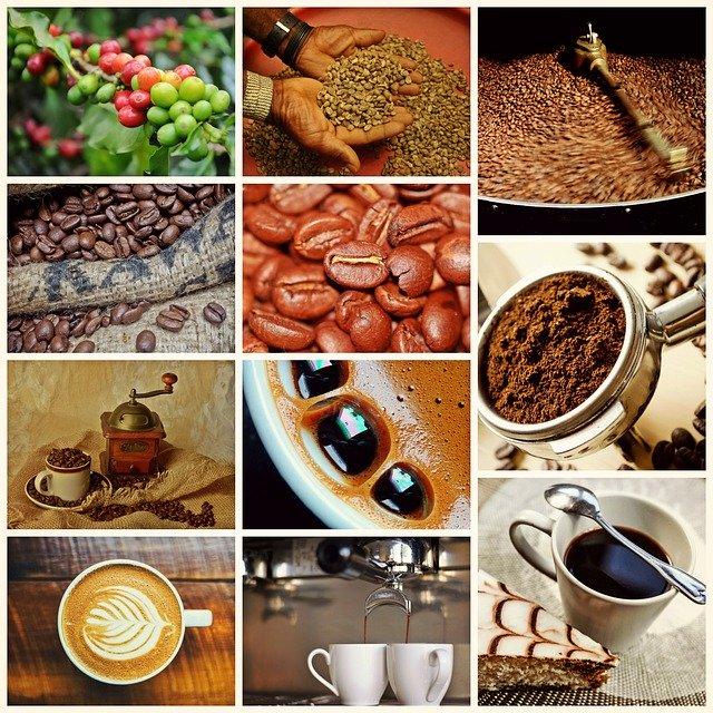 le café vert aide à maigrir