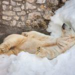 L'importance de mieux dormir en hiver