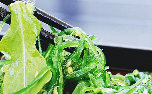 alimentation du futur algues et insectes au menu