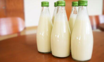 Quel est l'impact du Kéfir de lait sur l'organisme?